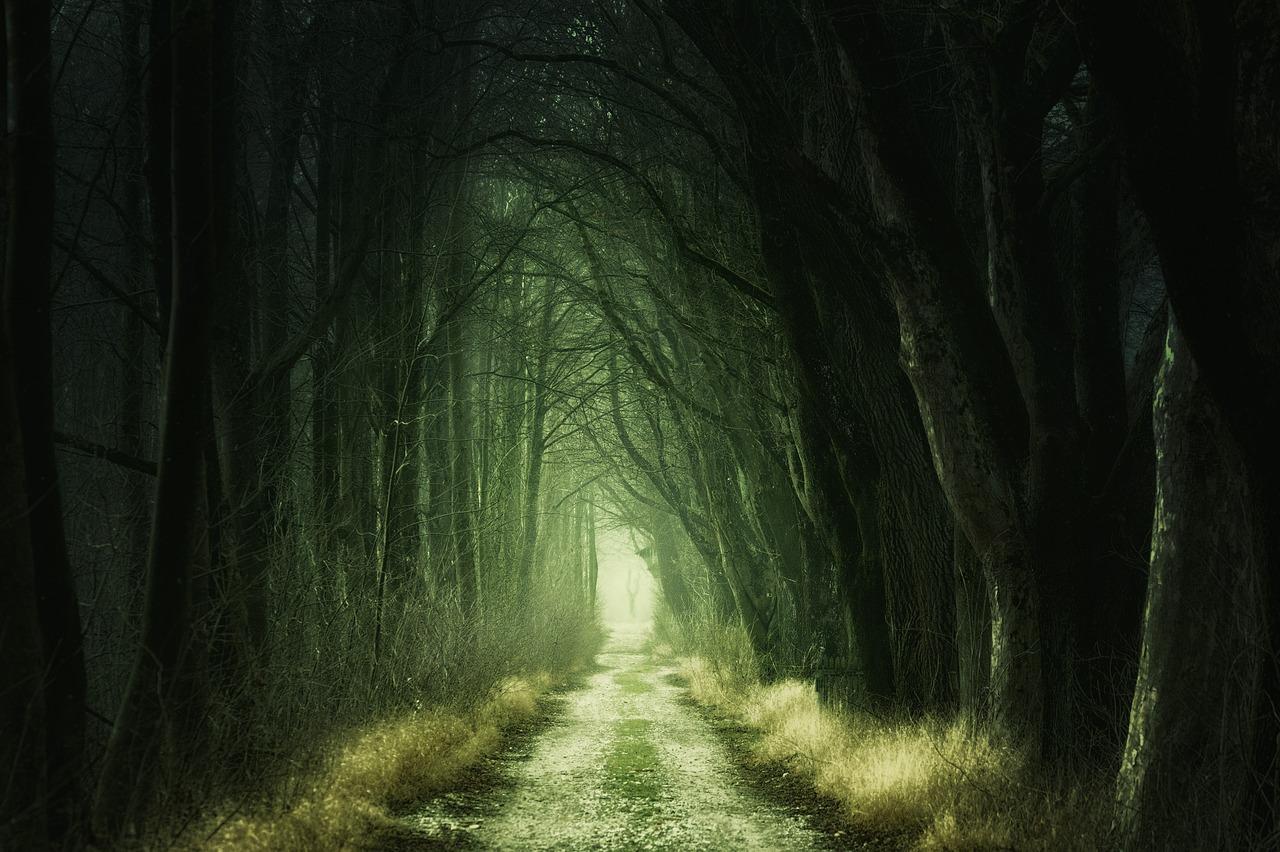 Der Weg zu meiner Beziehung führt über mich. Der Weg zu mir führt über meine Beziehung.